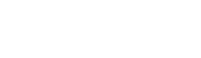 RainWorx Auction Software Logo